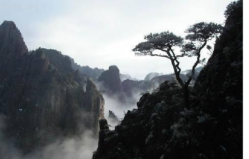 中国——黄山 d.JPG