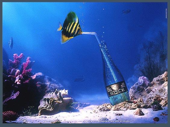 mineral water.jpg