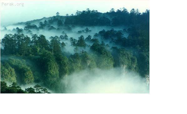 中国——峨嵋山风景名胜区及乐山大佛 c.JPG
