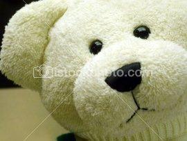 ist2_148081_teddy_bear.jpg