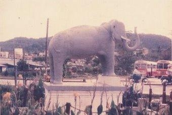 gajah.jpg